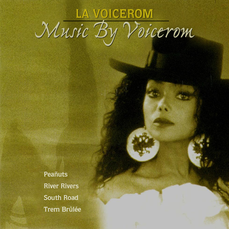 La Voicerom4 2