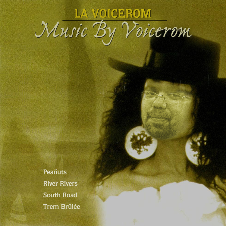 La Voicerom5 2